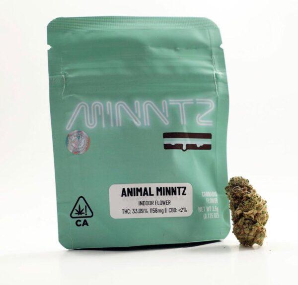 Buy Animal Minnts Strain Online