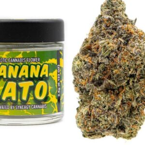 Buy Banana Lato Strain by Synergy Online