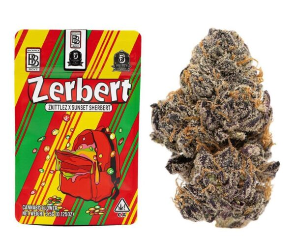 Buy Zerbert BackPackBoyz Online