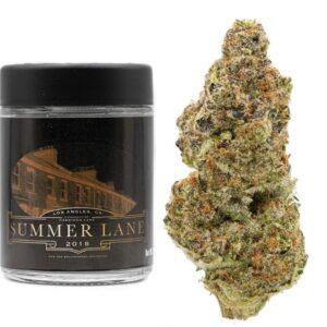 Buy Summer Lane Strain Online