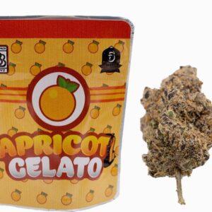 Buy Apricot Gelato Backpackboyz Onlin