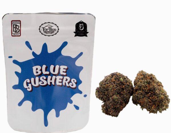 Buy Blue Gushers Backpackboyz Online