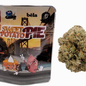 Buy Sweet Potato Backpackboyz Online