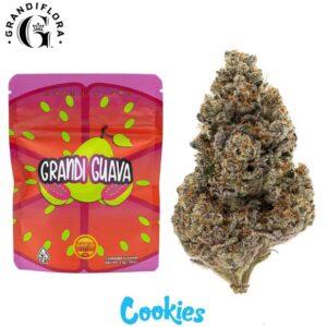 Buy Grandi Guava Strain by Grandiflora