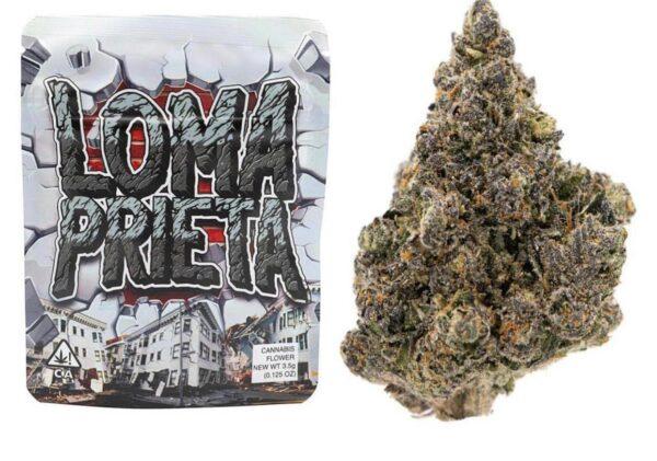 Buy Loma Prieta Strain by Grandiflora |