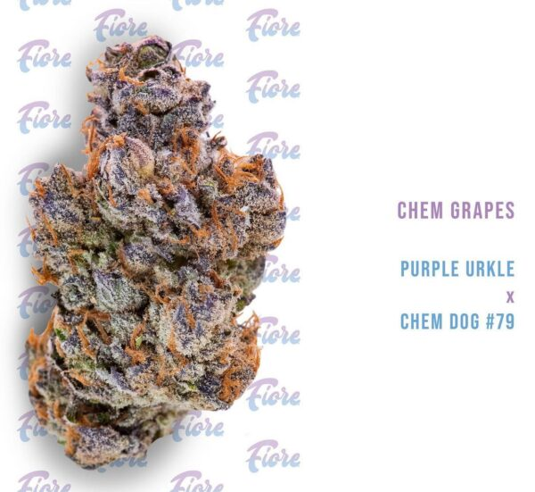 Buy Chem Grapes Strain by Fiore Online