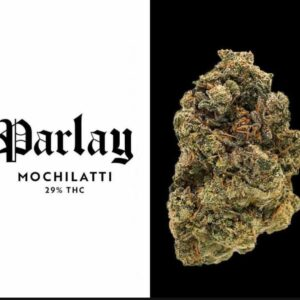 Buy Mochilatti Strain by Parlay Online