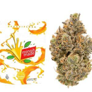 Buy Minnit Made Grandiflora Strain Online