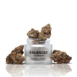 Buy Balancato Strain by Balanced Los Angeles