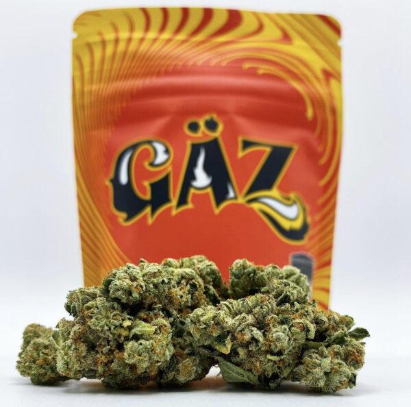 Buy Gaz Strain by Seven Leaves