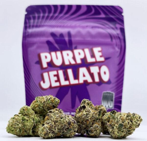 Buy Purple Jellato Strain by Seven Leaves