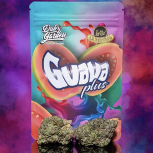 Buy Guava Plus Strain by Dubz Garden